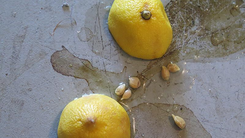 HOW TO CLEAN GARAGE FLOOR WITH LEMONS