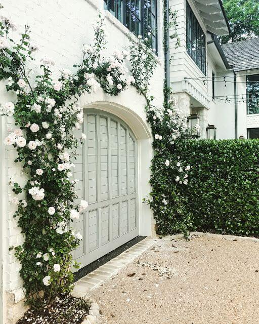 OUTSIDE GARAGE DECORATING IDEAS WITH VINES